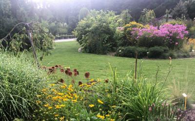 Botanical Garden, Kassa