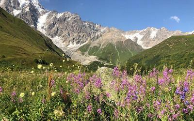 Virágpompa a Kaukázusban